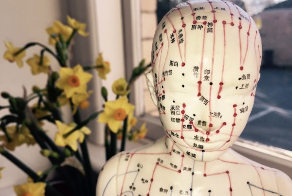 photo of acupuncture doll